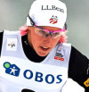 FIS world cup cross-country, individual sprint, Lillehammer (NOR)