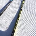 Salomon Prolink w/Fischer skis [P] Drew Goldsack