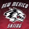 New Mexico Skiing logo 2017-05-03 at 10.39.53 PM.33
